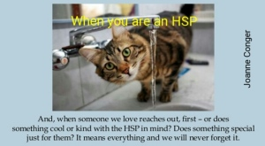 hsp -kitty